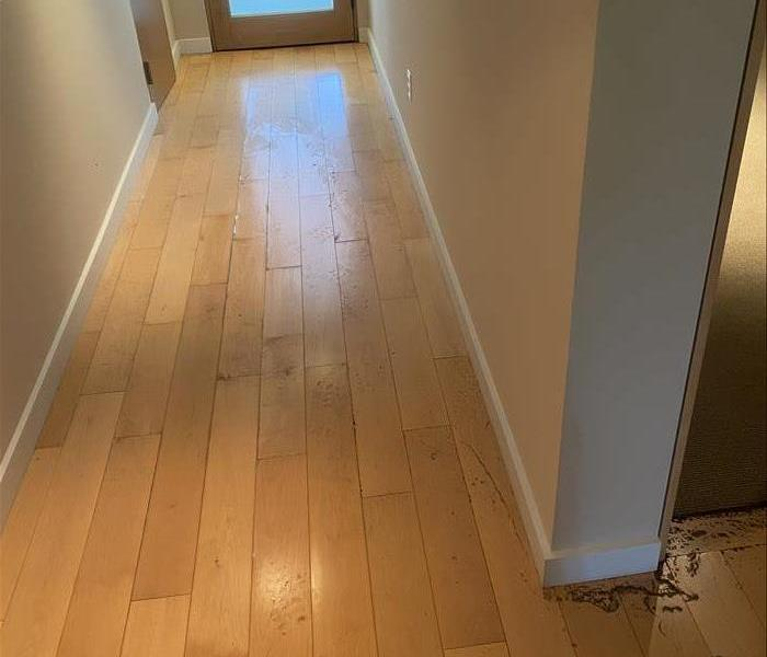 Wood floors after water damage