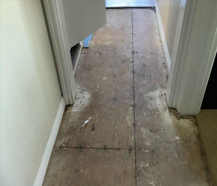 hallway after mitigated water damage